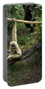 White Handed Gibbon 2 Portable Battery Charger