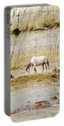 White Horse On A Mound Portable Battery Charger