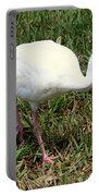 American White Ibis Bird Portable Battery Charger