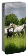 White Lipizzaner Mares Horse Breed With Dark Foals Grazing In A  Portable Battery Charger