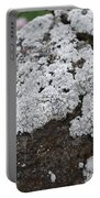 White Moss Portable Battery Charger