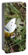 White Moth Portable Battery Charger