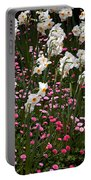 White Narcissus With Pink English Daisies In A Spring Garden Portable Battery Charger
