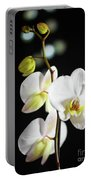 White Orchid On Black Bw Portable Battery Charger