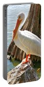 White Pelican By Cypress Tree Portable Battery Charger
