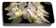 White Phalaenopsis Blossom Portable Battery Charger