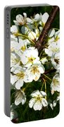 White Plum Blossoms Portable Battery Charger