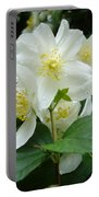 White Spring Blossom Portable Battery Charger
