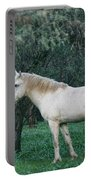 White Stallion In The Woods  Portable Battery Charger