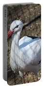 White Stork Portable Battery Charger