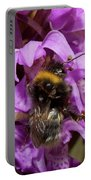 White-tailed Bumblebee On Southern Marsh Orchid Portable Battery Charger