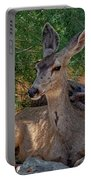 White-tailed Deer H1829 Portable Battery Charger