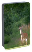 White Tailed Portable Battery Charger