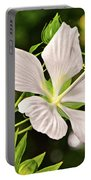 White Texas Star Hibiscus 003 Portable Battery Charger