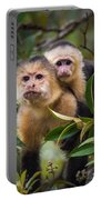 White-throated Capuchin Monkeys Cebus Portable Battery Charger