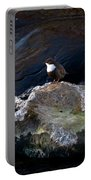 White-throated Dipper Nr 1 Portable Battery Charger