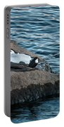 White-throated Dipper Nr 3 Portable Battery Charger
