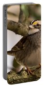 White Throated Sparrow On Branch New Jersey Portable Battery Charger