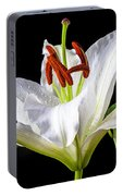 White Tiger Lily Still Life Portable Battery Charger