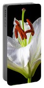 White Tiger Lily Still Life Portable Battery Charger by Garry Gay