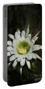 White Torch Cactus  Portable Battery Charger
