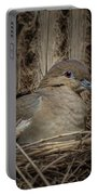 White-winged Dove - Nesting Portable Battery Charger