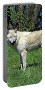 White Wolf 2 Portable Battery Charger
