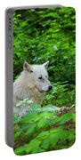 White Wolfe Portable Battery Charger