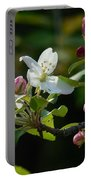 White Woodland Crabapple Flowers Portable Battery Charger