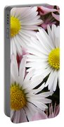 White Yellow Daisy Flowers Art Prints Pink Blossoms Portable Battery Charger