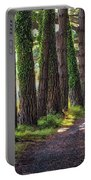Whiteford Burrows Woods Portable Battery Charger