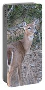 Whitetail Deer II Portable Battery Charger