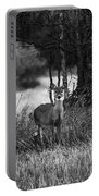 Whitetailed Deers Portable Battery Charger