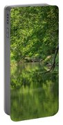 Whitewater River Scene 50 Portable Battery Charger