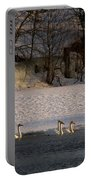 Whooper Swan Nr 14 Portable Battery Charger