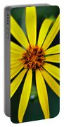 Whorled Rosinweed Portable Battery Charger
