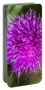 Whoville Portable Battery Charger