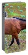 Wild Appaloosa Stallion Portable Battery Charger