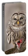 Wild Barred Owl With Prey Portable Battery Charger