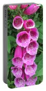 Wild Bells Portable Battery Charger