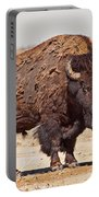 Wild Bison Portable Battery Charger