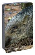 Wild Boar Of Pulau Ubin Portable Battery Charger