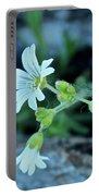 Wild Chickweed Portable Battery Charger