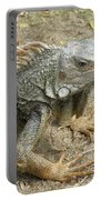 Wild Colorful Iguanas In The Outdoors With Spines On His Back Portable Battery Charger