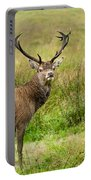Wild Deer Animals   Portable Battery Charger