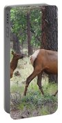 Wild Elk Baby And Mom Portable Battery Charger