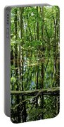 Wild Goose Woods Pond Iv Portable Battery Charger
