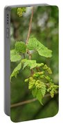 Wild Grapes 1992 Portable Battery Charger
