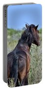 Wild Horse Of Assteague Island Portable Battery Charger