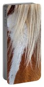 Wild Horses In Wyoming Portable Battery Charger
